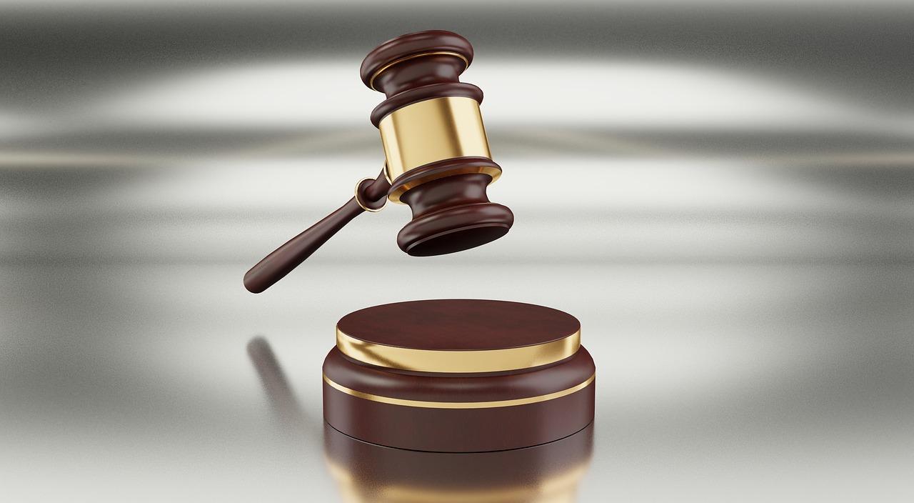 Restrição para exercício da profissão de leiloeiro é compatível com Constituição