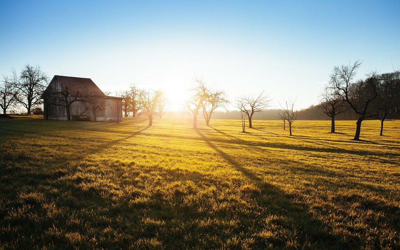 Pequena propriedade rural é impenhorável para pagamento de dívidas