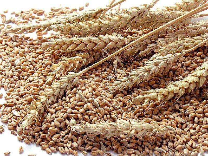 STF mantém validade de taxa de classificação de produtos vegetais