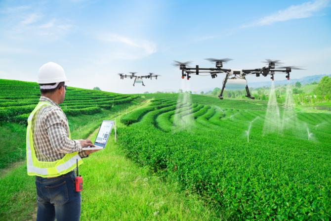 Para o STJ engenheiro agrônomo pode ser poluidor indireto