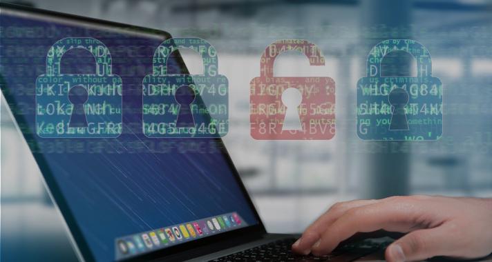Segurança da Informação: Mecanismos de Proteção Dentro das Organizações